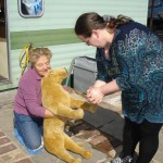 Canine-First-Aid-046